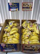 築地のおいしいバナナ.jpg